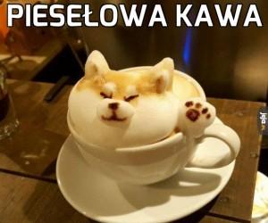 Piesełowa kawa