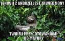 Leniwiec Andrzej jest zawiedziony...