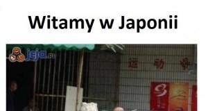 Japonię pomerdało