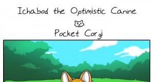 Przygody optymistycznego psiaka