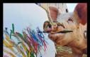 Ta świnia potrafi namalować obraz warty nawet 5000 dolarów