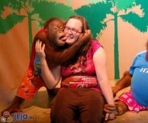Pocałunek małpy