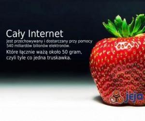 Internet zasilany jedną truskawką