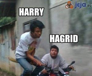 Harry i Hagrid: Edycja wietnamska