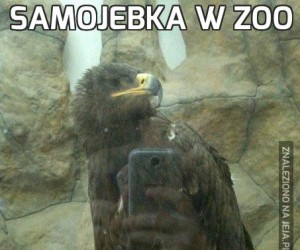 Samojebka w zoo