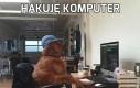 Hakuję komputer