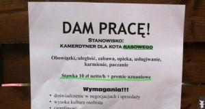 Warszawa - miasto możliwości