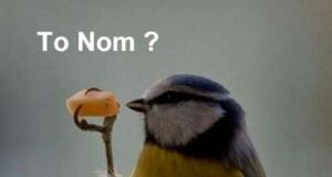 To Nom?