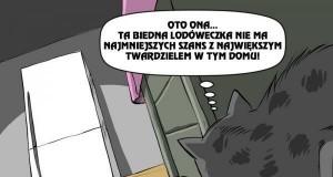 Kot vs Lodówka