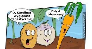 Tymczasem wśród warzyw