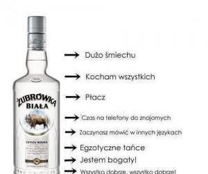 Prawda o piciu wódki