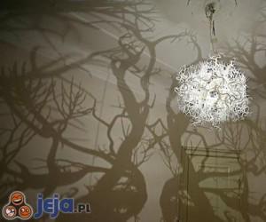 Mroczny las w Twoim pokoju