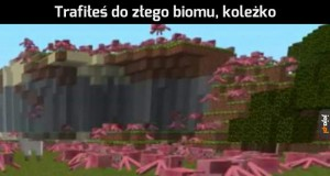Coś dla fanów Minecrafta