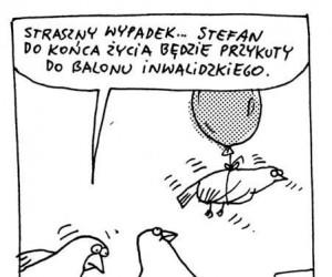 Ptasie inwalidztwo