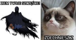 Dementor kontra grumpy cat