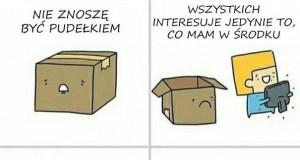Właśnie dlatego koty kochają pudełka