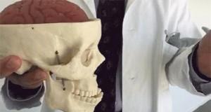 Uwaga! Mocny facepalm może być groźny dla Twojego mózgu.