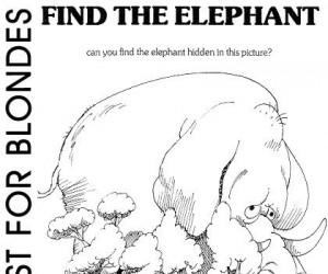 Test IQ - Znajdź słonia