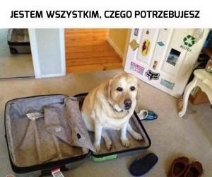 To co, jedziemy?
