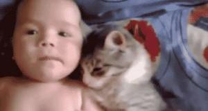 Ten mały człowiek nie wie jak głaskać!