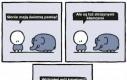 Słonie kłamią