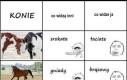 Końskie umaszczenie
