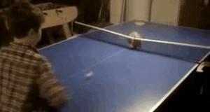 Ping-Pong z kotem