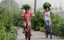 Ekologiczne parasole