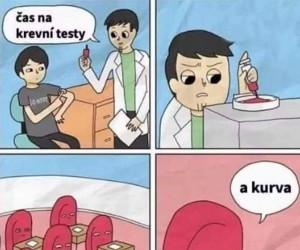 Czeskie testy krwi