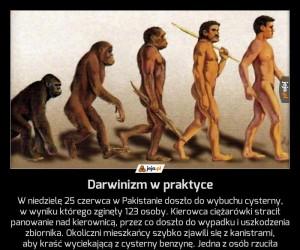 Darwinizm w praktyce