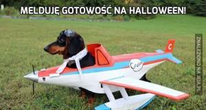 Melduję gotowość na Halloween!