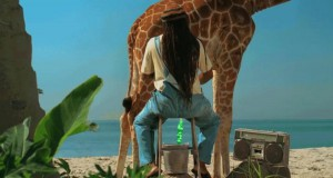 Kiedy admin doi żyrafę