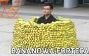 Bananowa forteca