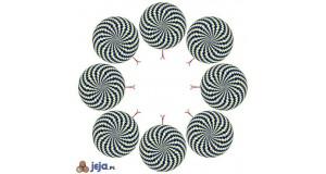 Iluzja - węże