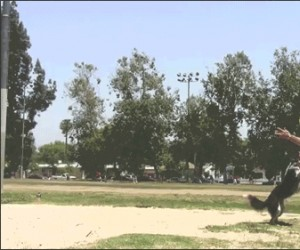 Superpies!