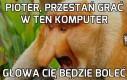 Komputer to zUo