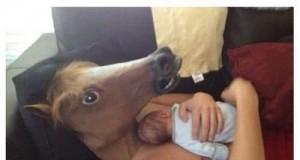 Wychowany przez konie