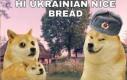 Całe jedzenie do Moskwy
