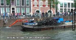 Wyławianie zatopionych rowerów w Amsterdamie