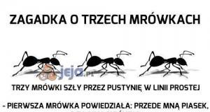 Zagadka o trzech mrówkach