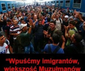 Imigranci i ruletka