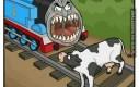 Krowa na torach