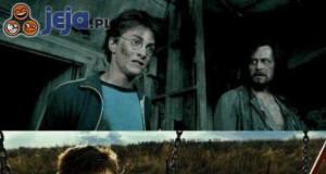 Harry uwielbia ten podkoszulek