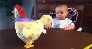 O rany, czo ta kura?!