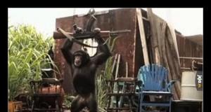 Człowiek Małpa dokonuje pierwszej zbrodni wojennej