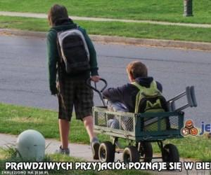 Prawdziwych przyjaciół poznaje się w biedzie