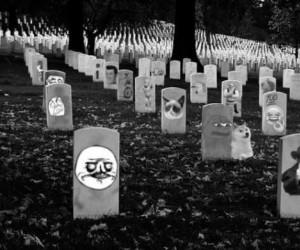 Cmentarz martwych memów