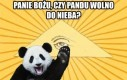 Pandu u bram niebios