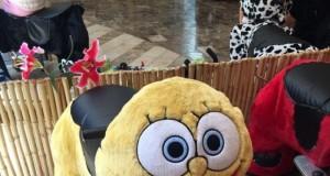 Spongebob, czy to Ty?