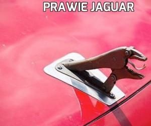 Prawie Jaguar